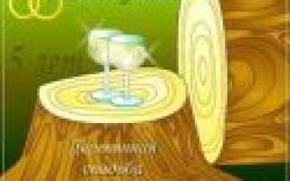 Деревянная свадьба – прикольный сценарий проведения