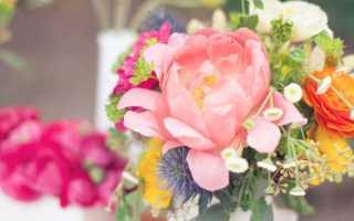 Тематика свадьбы летом – что выбрать?