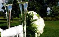 Меню для свадьбы на природе – чем угощать гостей на открытом воздухе