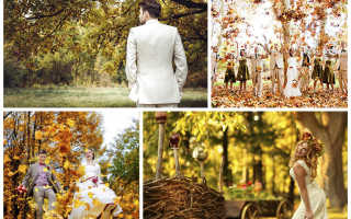 """Свадьба в стиле """"осень"""": гармония цвета и варианты проведения незабываемой свадьбы"""