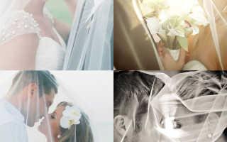Лучшие позы для свадебной фотосессии на все времена года (фото)