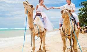 Интересные поездки в свадебные путешествия или где провести медовый месяц в июле
