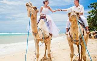 Где провести медовый месяц весной – выбираем самое интересное