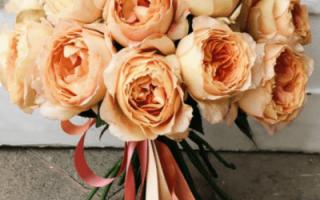 Свадебный букет из пионовидных роз – фото: гармоничные сочетания цветов