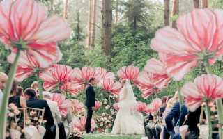 Сказочная свадьба – детские воспоминания становятся реальностью